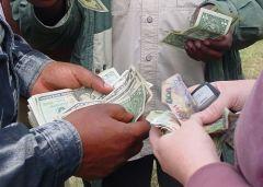 Права и обязанности резидентов при проведение валютных  операций
